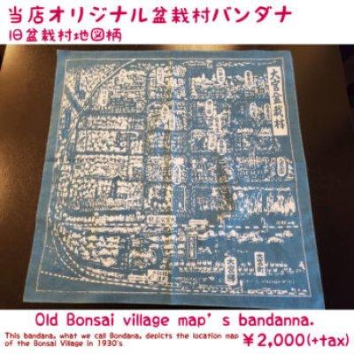 Photo1: No.bandana  Old Bonsai village map bandana