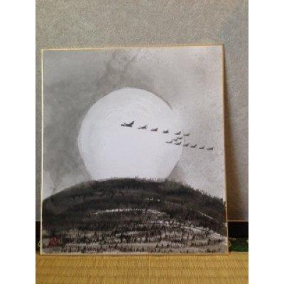 Photo1: No.SH1002  birds