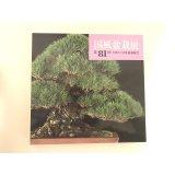 No.KF81  Kokufu album 2007 (total 286 pages)